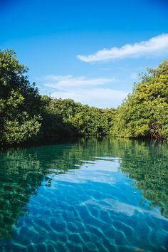 Casa Cenote, Tulum -9
