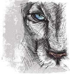 Руки drawn эскиз Льва пристально смотрит в камеру — стоковая иллюстрация #23419878
