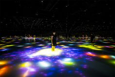 Interactive Koi Pond by Teamlab