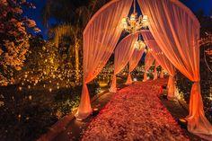 drapery over pathway flower petals marrakech morocco destination wedding ceremony opulent outdoor Desi Wedding Decor, Wedding Hall Decorations, Engagement Decorations, Wedding Mandap, Wedding Themes, Wedding Ceremony, Wedding Ideas, Wedding Walkway, Wedding Receptions