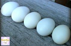 Fresh Eggs Daily®: Ameraucana vs. Araucana vs. Easter Egger - The Blue Egg Layers