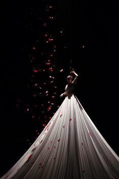 Big Dress & Petals by Mark Robson