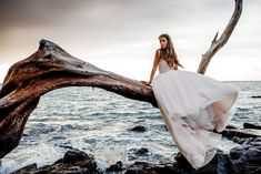 Obsessed with this bride sitting on a tree near the ocean in Hawaii  image by Karina & Maks Photography