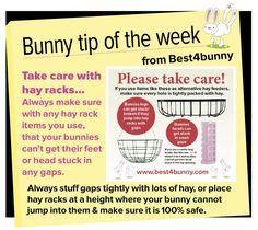Bunny tip week - 20 Take care with hay racks