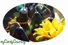 Come realizzare zucche dipinte fatte a mano. Visita www.mycandycountry.it