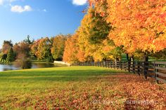 kentucky landscapes | Scenic Kentucky | Larry C Pennington | Kentucky Landscape Photographer ...