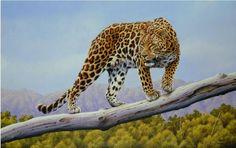 White Wolf : Eric Wilson - Wonderful British wildlife artist