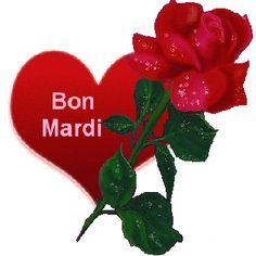 Image Bon Mardi, Happy Friendship Day, Gif Photo, Gifs, Cat Grooming, Beautiful Roses, Christmas Ornaments, Holiday Decor, Tuesday
