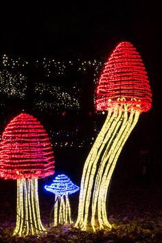 some of garvans unique light creations - Garvan Gardens Christmas Lights