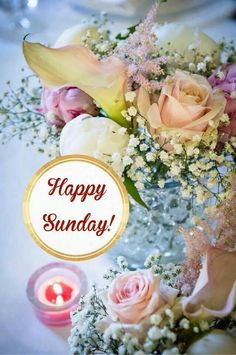 Good morning sister have a nice day 💖💝💠🌻☕ Sunday Wishes, Sunday Greetings, Happy Sunday Quotes, Morning Quotes, Morning Messages, Good Sunday Morning, Good Morning Wishes, Sunday Images, Morning Images