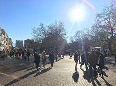 So sunny! Street View, Restaurant, Dinner, Instagram, Food, Dining, Diner Restaurant, Food Dinners, Essen