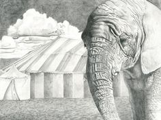 """""""A day in the circus"""" 