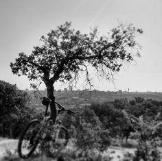 Urban mountain biking #madrid