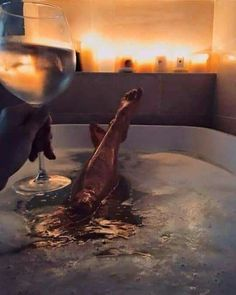 Let's relax! 💛🍷Let's relax! Classy Aesthetic, Luxe Life, Relaxing Bath, Photography Poses, Bubble Bath Photography, Intimate Photography, Life Is Good, Photoshoot, In This Moment