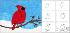 Winter Cardinal Art Project: simple step-by-step drawing, could be finished with paint, oil pastels, markers
