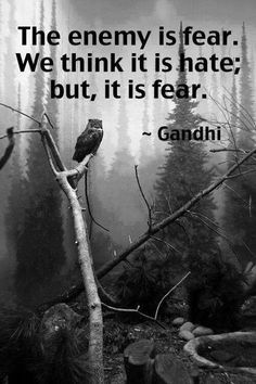 Gandhi hit the nail on the head with this. We fear what we know but also who and what we don't know.