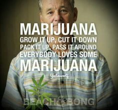 Stoners. And I love the fact that Bill Murry is in the picture.
