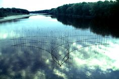 """""""Bluebird"""", September 25, 1999, 72' X 38' wide, 12' high, willow saplings, on the Wisconsin River, near Blue River, Wisconsin.   (photo: Roy Staab)    Artist: Roy Staab  Title: Works on Water  Date: 1999"""