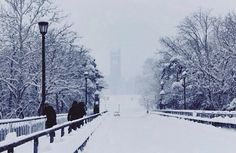 University of Western Ontario in the winter