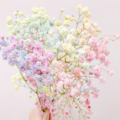 Image shared by Find images and videos about flowers on We Heart It - the app to get lost in what you love. Rainbow Aesthetic, Flower Aesthetic, Purple Aesthetic, Aesthetic Collage, Pretty Pastel, Pastel Pink, Pastel Colors, Pastels, Pastel Candy