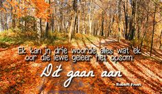 Vrouekeur | Aanhalings My Roots, Afrikaans, Reading, Quotes, Scrapbooking, Google Search, Summer, Quotations, Reading Books
