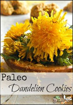 Paleo Dandelion Cookies from the Children's Garden - A Healthy Foraged Treat for All Ages!
