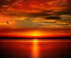 redwingjohnny: good morning world :) Amazing Sunsets, Beautiful Sunset, Amazing Nature, Beautiful World, Beautiful Places, Beautiful Pictures, Sky And Clouds, Belle Photo, Beautiful Landscapes