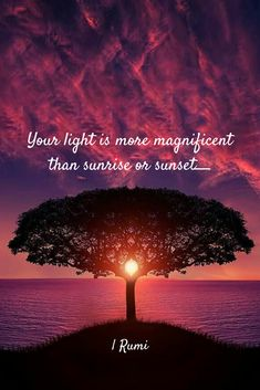 Your light is more magnificent than sunrise or sunset. Rumi Love Quotes, Sufi Quotes, Spiritual Quotes, Wisdom Quotes, Rumi Inspirational Quotes, Rumi Quotes Life, Belief Quotes, Reality Quotes, Motivational Quotes
