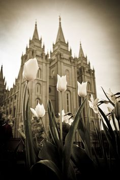 Where id love to be married, for all time and eternity.  Salt Lake City LDS Temple