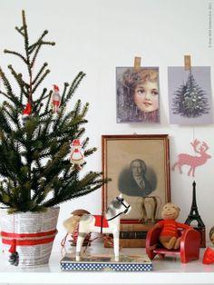 Não interessa se vai passar o Natal sózinho ou se vai viajar nas festas, o pinheiro não pode faltar, seja ele pequeno e modesto ou robusto e...