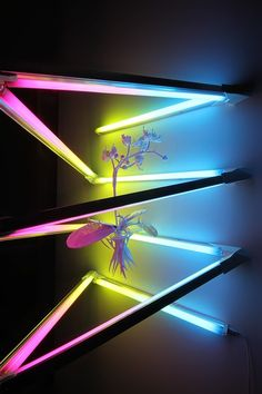 "James Clar, ""Orchid"", 2012, colored fluorescent lights and a 3D printed orchid, 70x55x55 cm."
