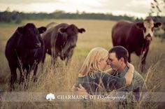 adorable.....maybe not quite so engagement sessiony, maybe us just sitting together looking straight on towards the camera with the cows in the back ground.