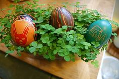 Clover baskets -- not too late to finally do it this year!
