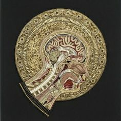 Extreme paper quilling - Lisa Nilsson's anatomical cross-section.