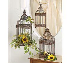 decorative bird cages ideas - Google Search