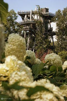 Die Garten Tulln... #Gartensommer #Gewinnspiel