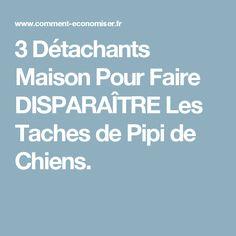 3 Détachants Maison Pour Faire DISPARAÎTRE Les Taches de Pipi de Chiens.