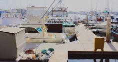 #califorinia #cali #ca #oceansidebeach #pier #oceanside #summer #photoshoot