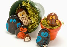 DIY Easy Painted Rock Owls for A Fun Spring Project