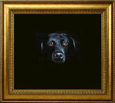 Dog in the darkness painting | nlivenart