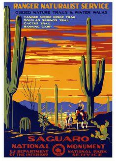 WPA, Saguaro National Monument 1930's
