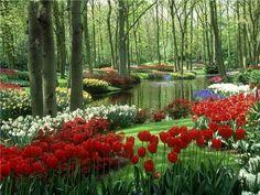 Keukenhof Gardens, Keukenhof,Holland