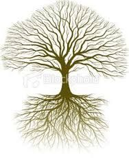 tree roots drawing - Google Search