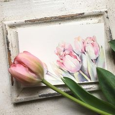 Love the tulips placement in the corner. Watercolor Journal, Watercolor Print, Watercolor Illustration, Watercolour Painting, Watercolor Flowers, Watercolours, Watercolour Tutorials, Watercolor Techniques, Botanical Art
