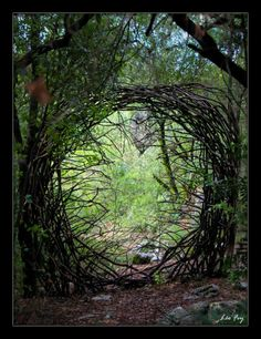 A Year in a French Forest. 2011-2012 - very cool sculptures made in the forest out of natural materials, follow link to see more