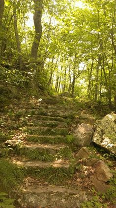 Steps leading up to Comers Rock, Grayson County Va.