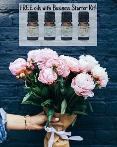 Best 50 Romantic Happy Birthday Images For Him with Love Quotes - Happy Birthday Wishes Happy Birthday Images, Happy Birthday Wishes, Today Is Monday, Types Of Roses, Plant Information, Fotos Do Instagram, Tumblr, Favim, Pink Peonies
