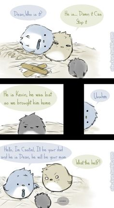 Destiel birds... + Kevin