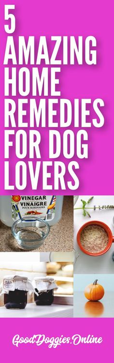 You would be surprised at how many things home remedies for your dog you can find around the house. Everything from shedding, chew spray, fur tangles and more. #dogs #homeremedies #shedding
