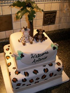 Safari Baby Shower Cake by mistys boopettie cakes, via Flickr